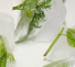 7 Foods you Didn't Know you could Freeze