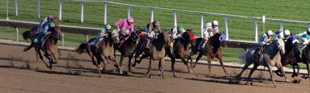 Cheltenham Races Promo Codes