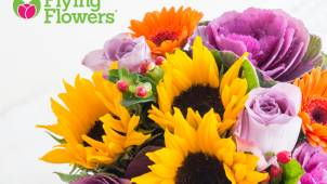 11% off Orders at Flying Flowers